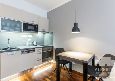 f1-530_pronajem_apartmany_praha_albertov_rental_apartments-06-1