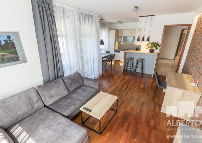 E-316_2019_pronajem_apartmany_Praha_Albertov_Rental_Apartments-03